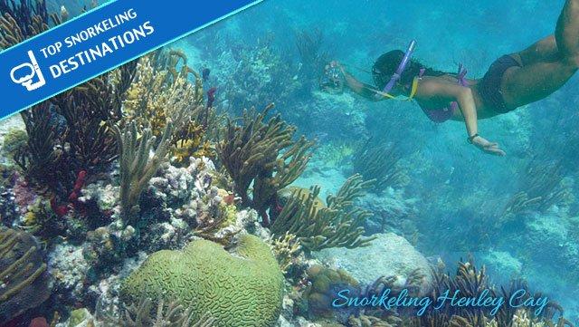 henley-cay-snorkeling-st-john