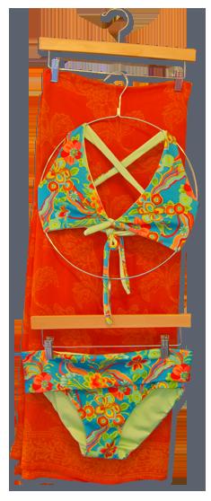 Ranifly Bikini suit