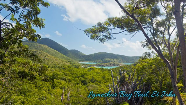 Lameshur Bay looking from the Lameshur Bay Trail on St John.