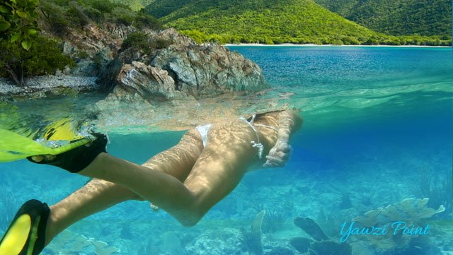 Excursion In St Thomas The Virgin Island