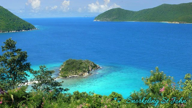 Best St John Snorkeling Spots On Island Times Us Virgin