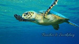 St. John snorkeling information