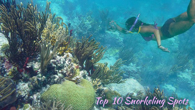 Top 10 snorkeling spots for St John, Virgin Islands