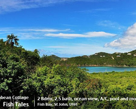 Fish Tales St John rental villa island cottage