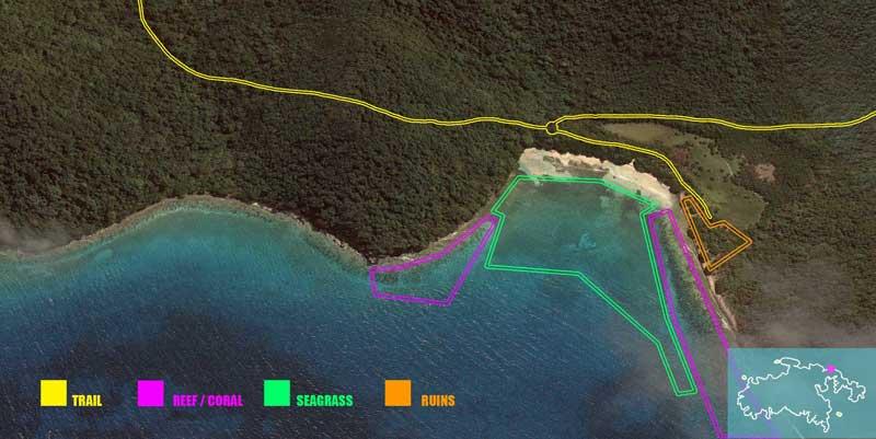 Brown Bay, St John snorkeling spots
